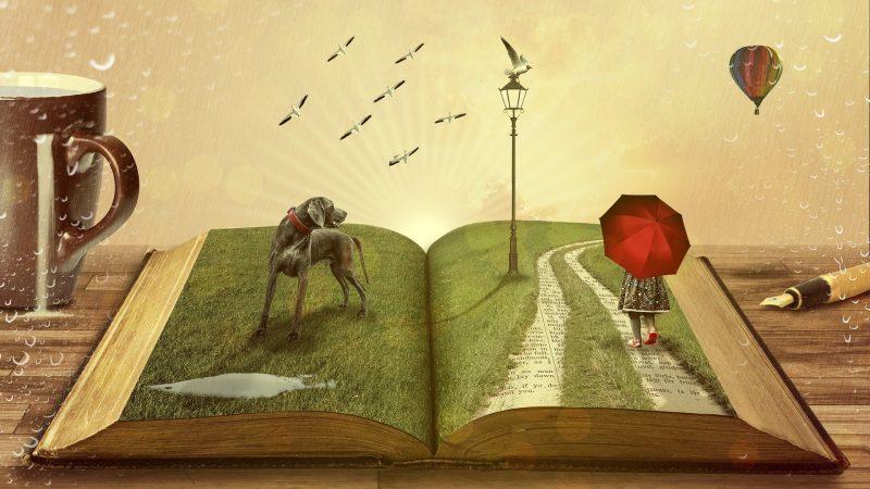 Elementos del Storytelling